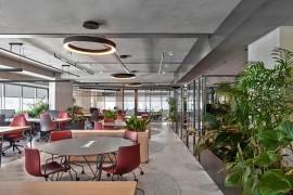 土耳其进修管理集团官网work使用室策划:繁茂绿植,打造活力容量